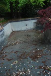 Empty Pool!