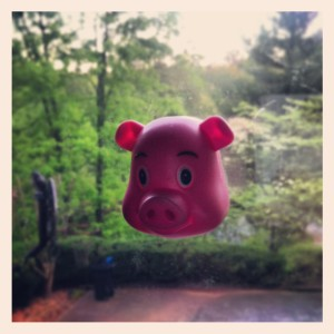 Piggy in the window